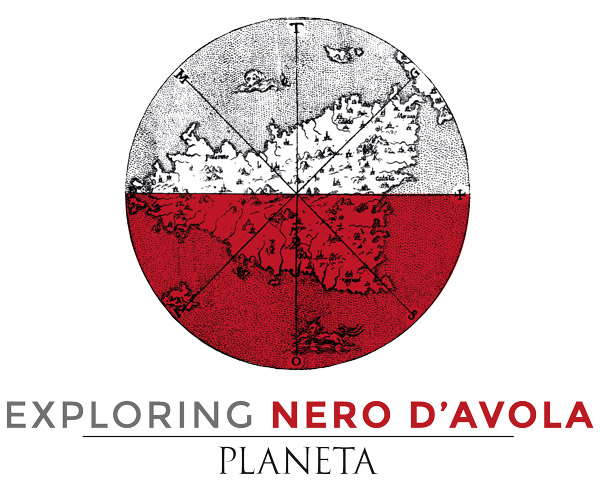 Exploring Nero d'Avola, our harvest story
