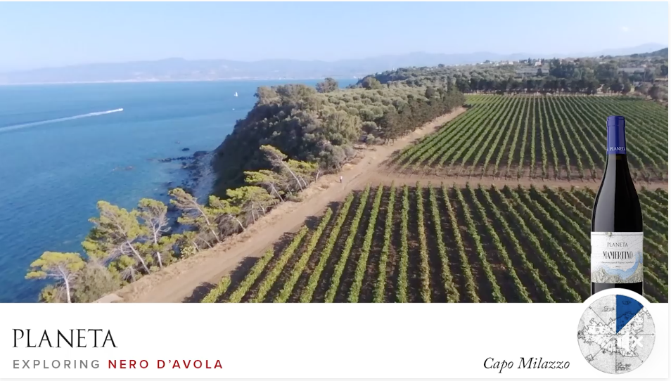 We fly on the vineyards of Nero d'Avola in Capo Milazzo
